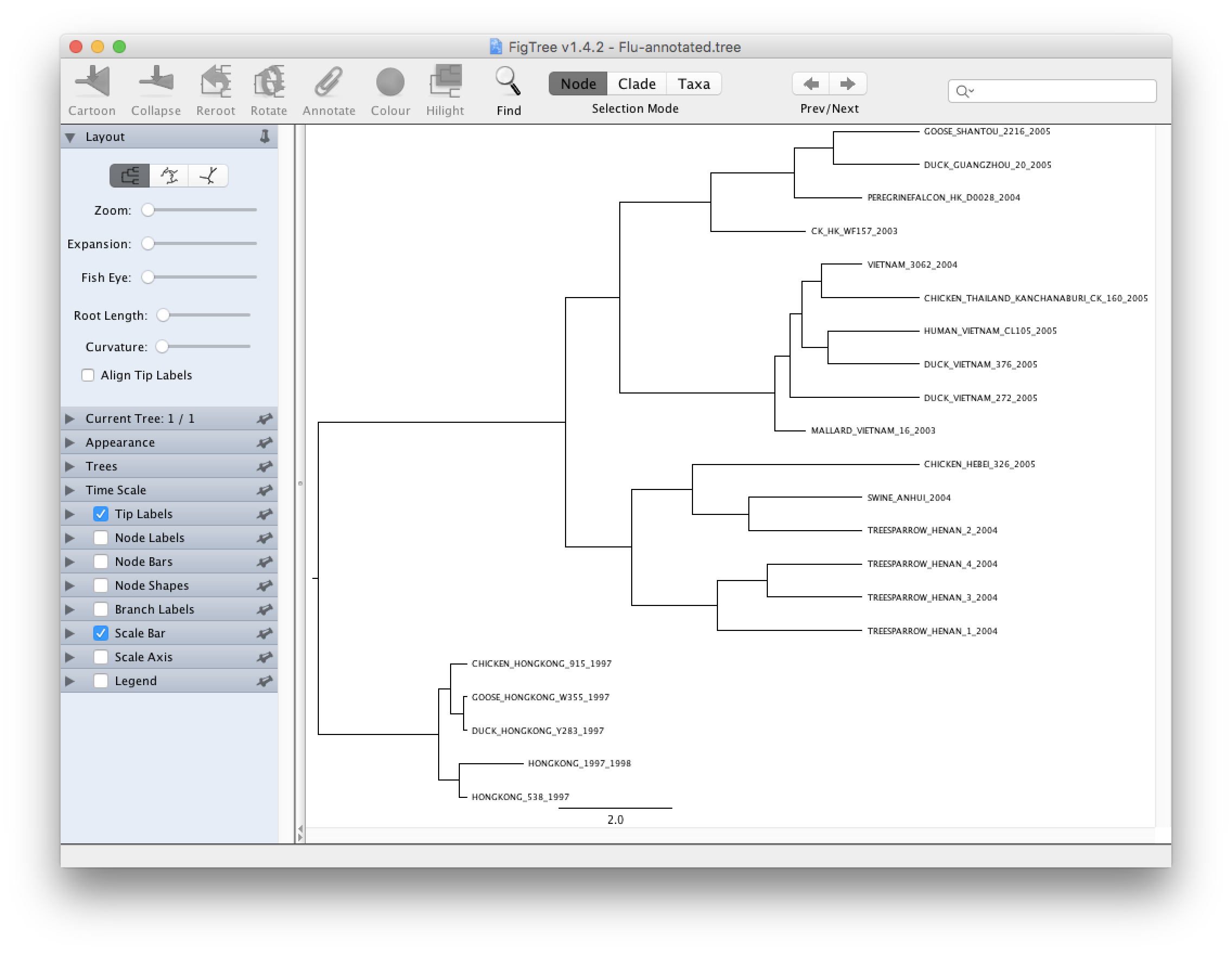 Introduction To Beast Bioinformatics Tutorials Is Not So User Friendly We Will Explain Bellow Why This Software Try Do The Following Improve Your Tree